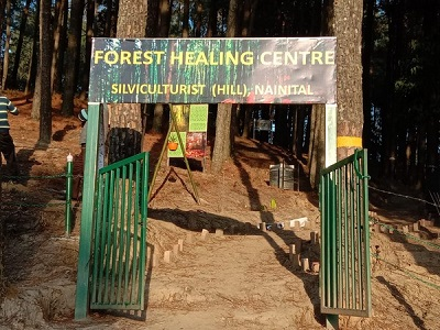 India's 1st forest healing centre inaugurated in U'khand's Ranikhet