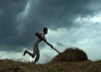 Monsoon likely to be 'normal' at 98% of long period average: IMD
