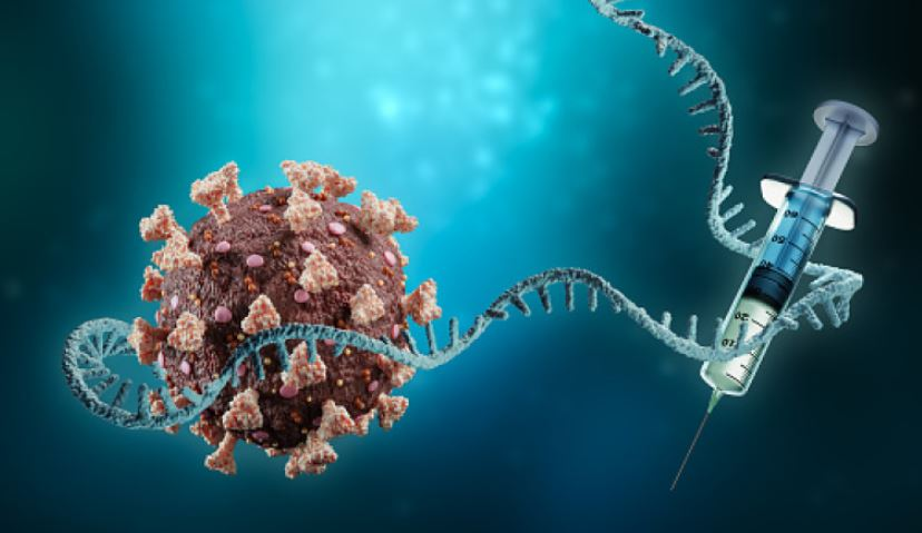 Meet the genetic middleman mRNA, Know how it help develop Covid-19 vaccine