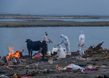 Bodies found floating in Ganga in UP'Ghazipur day after bihar horror