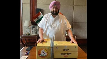 Congress selling COVID-19 treatment kits at higher prices: BJP