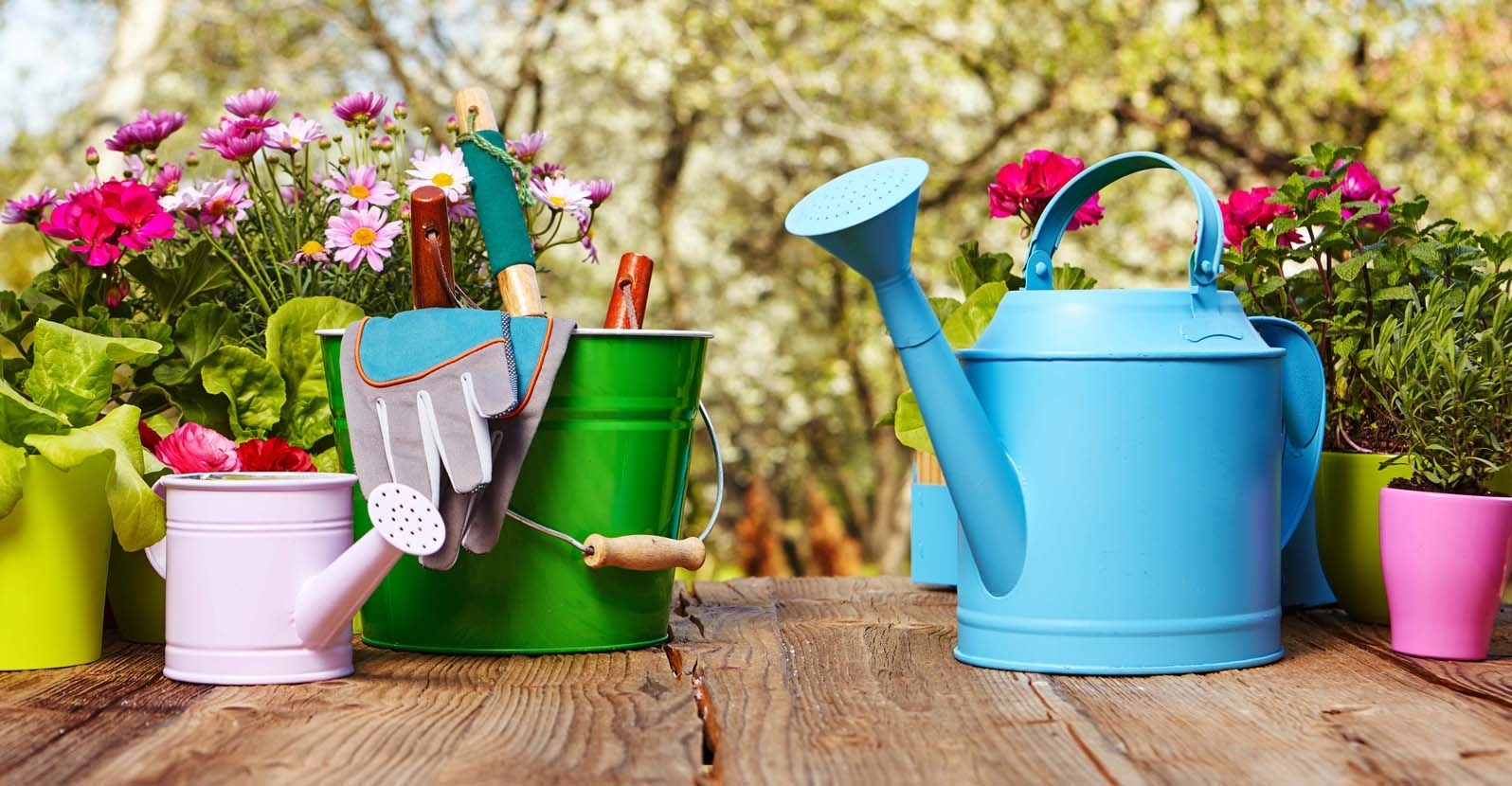 Essential Gardening Tools: Every home gardener must have