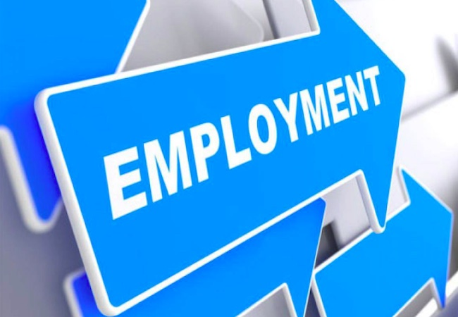 April-June job data brings in more good news for IT professionals, govt employees