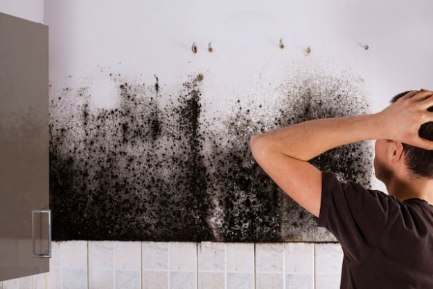 Effective home remedies to get rid of black mold from walls